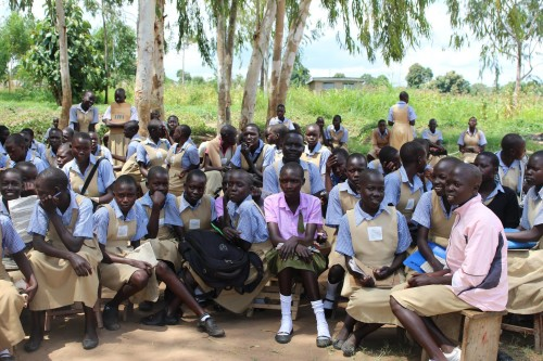 CRESS in South Sudan – a poem