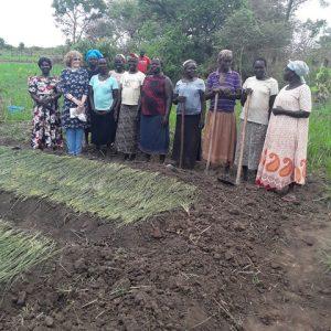 Joyful agricultural group