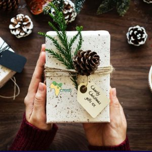 Charity Christmas Gifts
