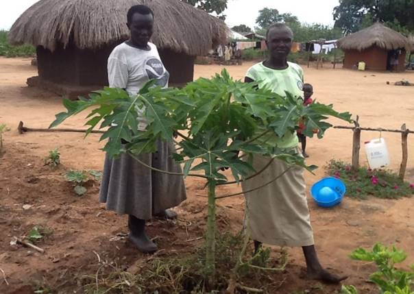 CRESS plants 1000 Trees