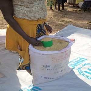Donation Enables Food Distribution to IDPs